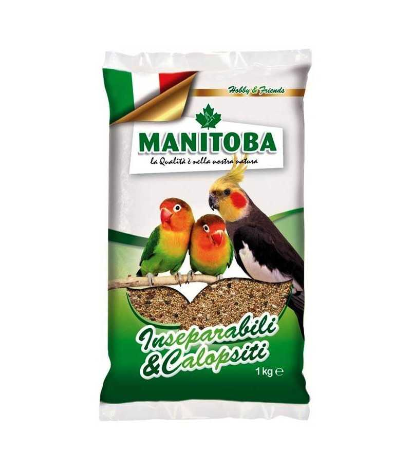 Manitoba Inseparabili e Calopsiti -...