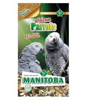African Parrots 2 kg MANITOBA
