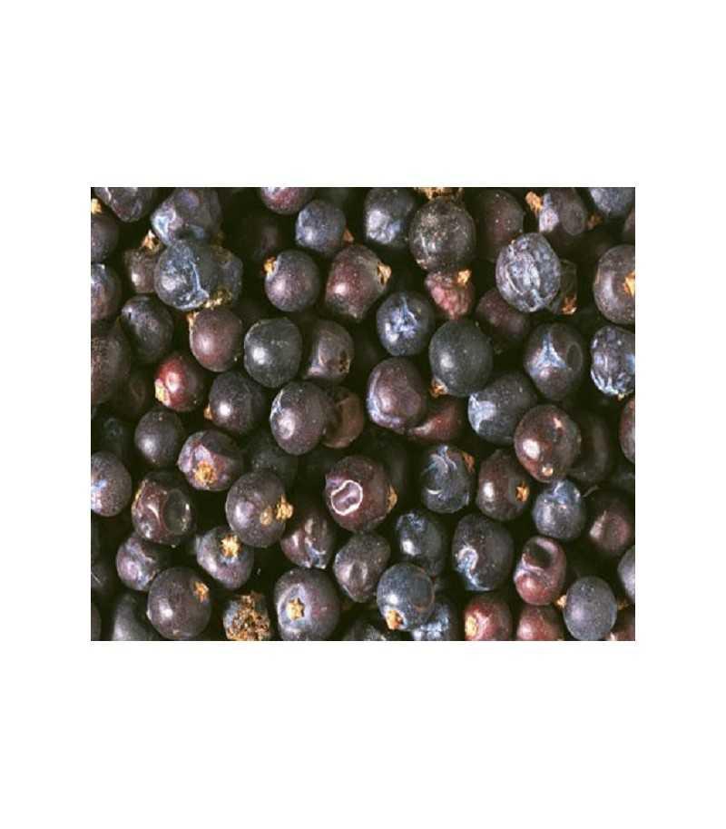 Bacche di Ginepro 250 g ORNITALIA