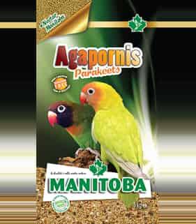 Manitoba Agapornis...