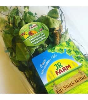 JR Farm Rami di Betulla 40 g