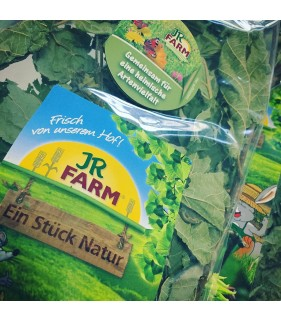 JR Farm Rami di Nocciolo 40 g