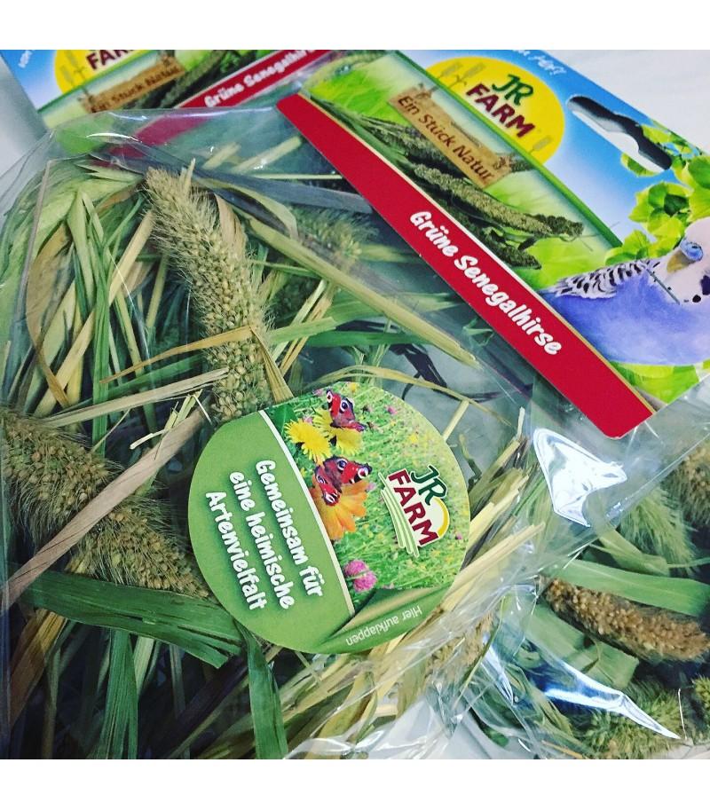 JR Farm Spighe di Miglio Senegalese...