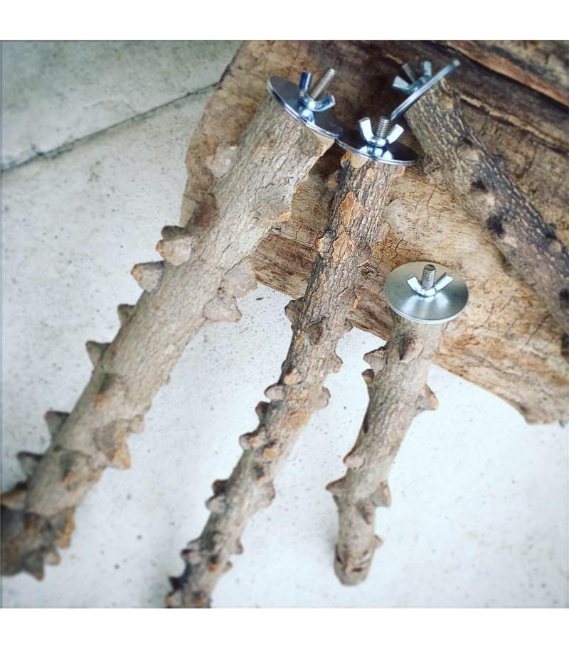 Posatoio in legno di Pepe tg L